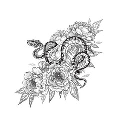 Twisted snake among peony flowers vector