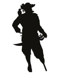 Corsair Warriors Theme vector image vector image