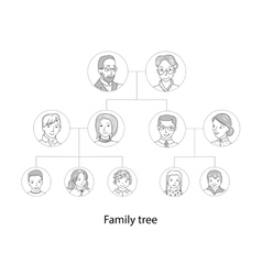 Family tree chart thin line style vector image vector image