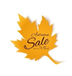 Autumn sale banner Yellow maple leaf vector