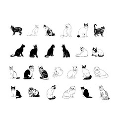 cat collection clipart vector image