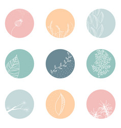 Floral botanical icons for social media vector