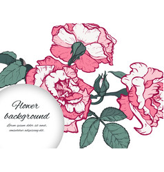 Hand drawn botanical vector