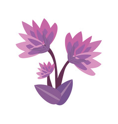 Lily flower spring image vector