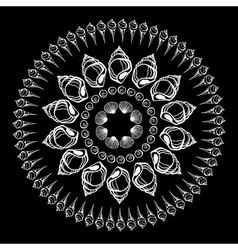 Sea Shells ornament vector
