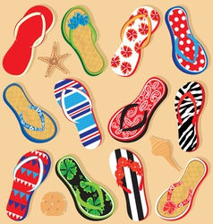 summer sandals vector image