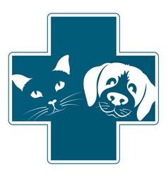 Veterinary clinic dog and cat vector