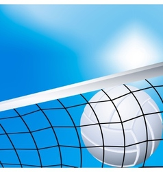 Volleyball in the net vector image vector image