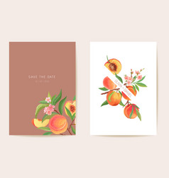 wedding invitation peach exotic fruits flowers vector image