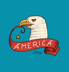 native eagle american set old labels and badges vector image