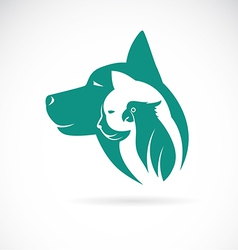 image of an dog cat and bird vector image