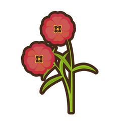 cartoon buttercup flower bloom spring vector image vector image