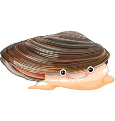 mussel vector image vector image