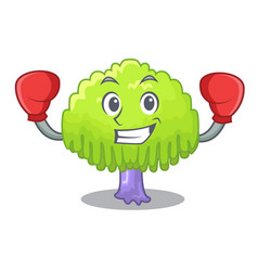 Boxing isolated weeping willow on the mascot vector