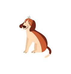cute cheerful beagle dog sitting humor flat vector image