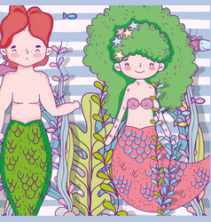 mermaids woman and man underwater with plants vector image