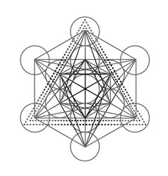 metatrons cube flower life feathers vector image