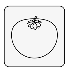 Monochrome contour square with tomato vector