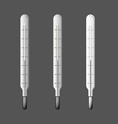 Set of three thermometers in vector image