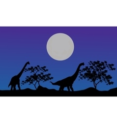 Silhouette of brachiosaurus at the night vector