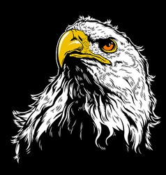 White Eagle Head vector