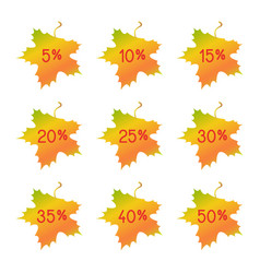 autumn discount elements - maple leaves vector image vector image