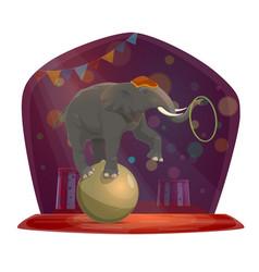 Circus elephant on ball chapiteau show vector