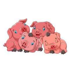 cute cartoon family pig vector image