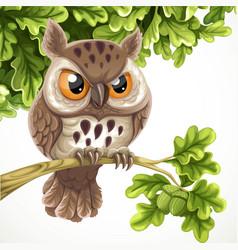 cute cartoon owl sitting on a oak branch under a vector image