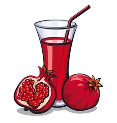 Pomegranate juice vector