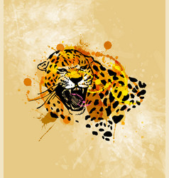 colored hand sketch head roaring jaguar vector image vector image