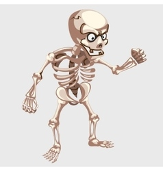 Human skeleton closeup with eyes in cartoon style vector image