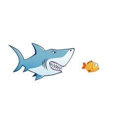 shark attak tiny fish vector image