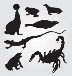 seals frogs lizards and scorpions vector image vector image