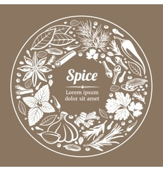 Background with herbs and spices vector