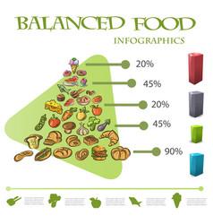 balanced food infographic pyramid on white vector image