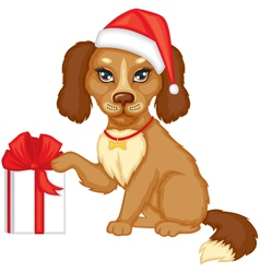 Dog in the cap with a gift vector image