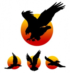 Eagle silhouettes vector