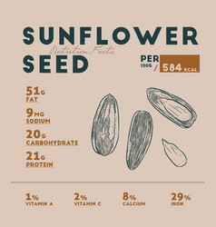 nutrition facts of sunflower seed hand draw vector image