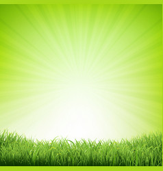 Summer poster with grass border vector