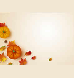 thanksgiving design pumpkin and maple leaves vector image