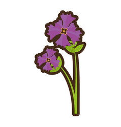 Cartoon iris flower garden botanical vector