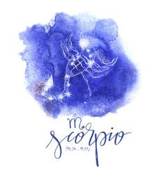 astrology sign scorpio vector image vector image