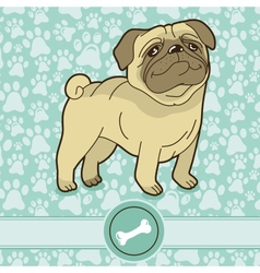 funny cartoon pug vector image