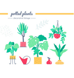 decorative foliage collection - set vector image