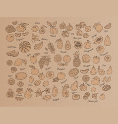 fruit icon hand-drawn set fruits on kraft vector image