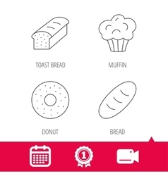 Muffin donut and toast bread icons vector image vector image