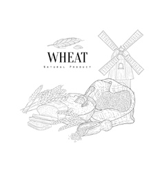 Wheat Natural Product Hand Drawn Realistic Sketch vector
