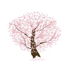 abstract floral sakura flower japanese tree vector image