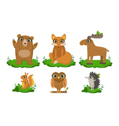 cute woodland animals set owl hedgehog bear vector image